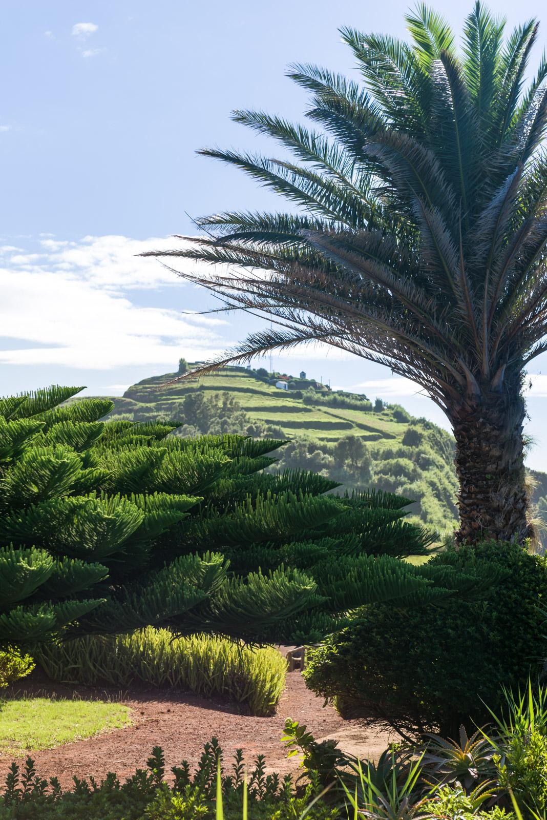 Açores - Sao Miguel (2016)