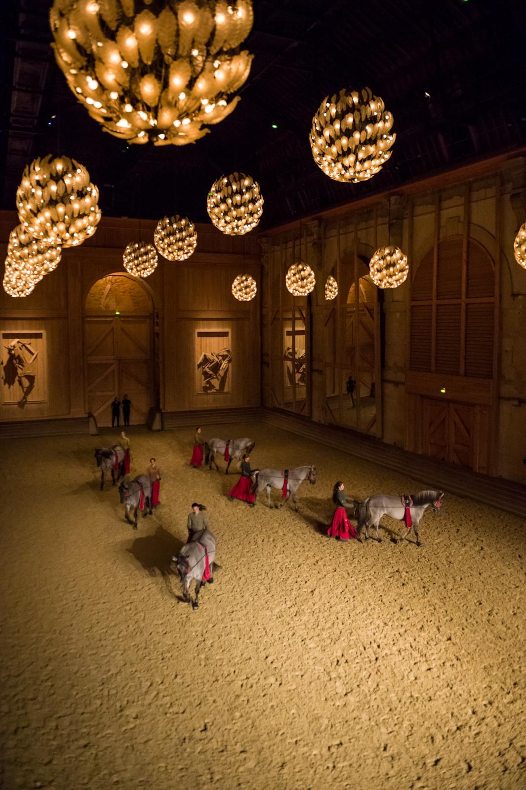 Académie équestre de Versailles (Direction Bartabas)