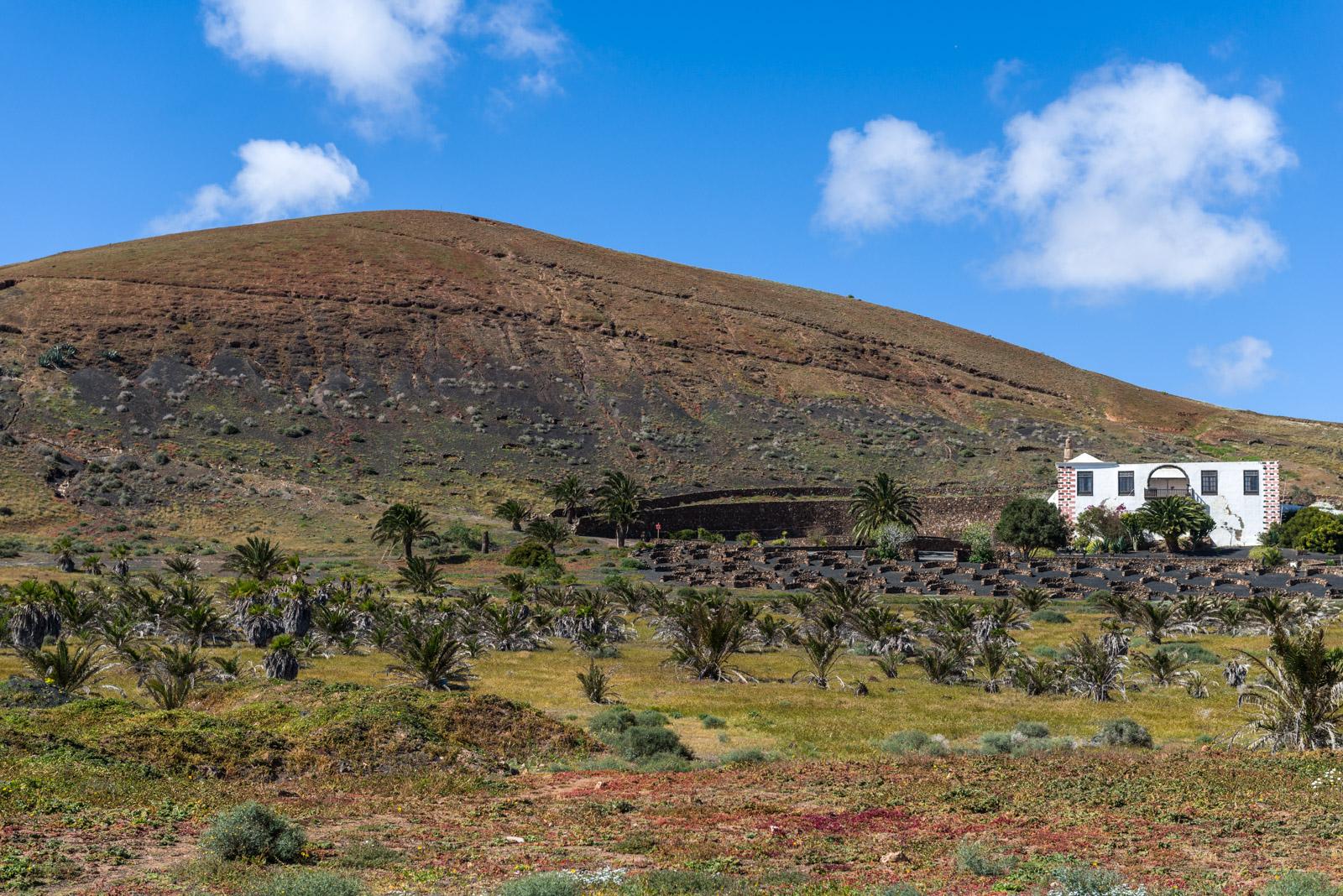 Iles Canaries - Lanzarote (2015)